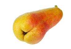 Зрелый изолированный плодоовощ груши Стоковая Фотография