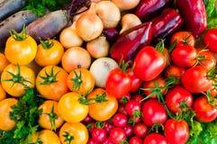 Зрелый конец-вверх свежих овощей вегетация неба моря Сардинии фото изображения береговой линии зеленая горизонтальная стоковые фотографии rf