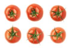 Зрелый красный изолированный томат Стоковое Изображение RF
