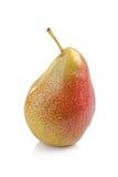 Зрелый красный плодоовощ груши изолированный на белой предпосылке Стоковое Изображение RF