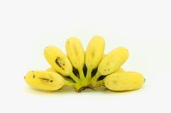 Зрелый культивируемый банан Стоковые Фото