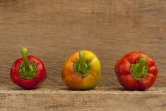 Зрелый перец 3 Стоковые Изображения