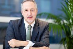 Зрелый портрет бизнесмена в его офисе Стоковая Фотография RF