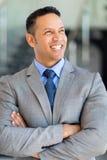 Зрелый портрет руководителя бизнеса Стоковые Фотографии RF