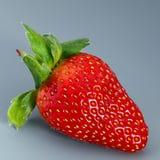 Зрелый плодоовощ клубники на серой предпосылке Стоковое Фото