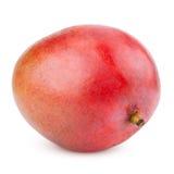 Зрелый плодоовощ мангоа Стоковые Фото