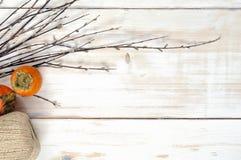 Зрелый плодоовощ хурмы с хворостинами вербы Стоковое фото RF