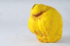 Зрелый плодоовощ стоковое фото