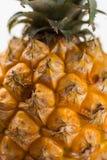 Зрелый сочный свежий конец макроса ананаса младенца вверх Стоковые Фото
