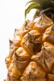 Зрелый сочный свежий конец макроса ананаса младенца вверх Стоковая Фотография