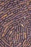 Зрелый сладостный тамаринд Стоковые Фотографии RF