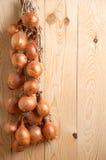 Зрелый лук на древесине стоковая фотография