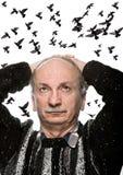 Зрелый человек смотря вверх на летящих птицах стоковая фотография rf