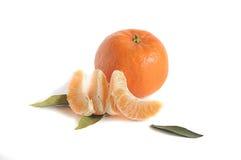 Зрелый tangerine стоковое фото rf