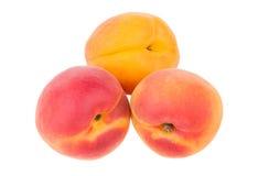 3 зрелых абрикоса изолированного на белизне Стоковая Фотография RF