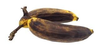 2 зрелых банана на белой предпосылке Стоковое Изображение