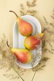3 зрелых груши на белой плите на свете - желтом пастельном backg Стоковые Изображения