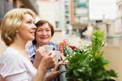 2 зрелых женщины выпивая кофе Стоковая Фотография