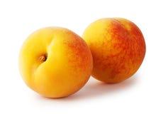 2 зрелых желтых абрикоса Стоковое Изображение RF