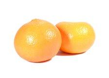 2 зрелых живых апельсина цвета изолированного на белой предпосылке Стоковые Фотографии RF