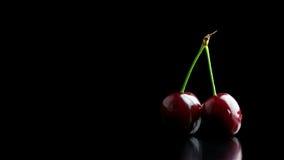 2 зрелых красных вишни Стоковое Фото