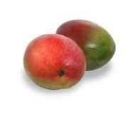 2 зрелых красных и зеленых плодоовощ манго изолированного на белизне с тенью Стоковая Фотография