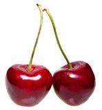 2 зрелых красных сочных ягоды вишни Стоковое Изображение