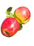 2 зрелых красных яблока, изолированного на белой предпосылке Стоковые Фото