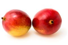 2 зрелых манго Стоковое Изображение RF