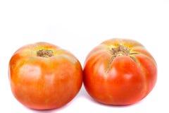 2 зрелых доморощенных томата Стоковая Фотография RF