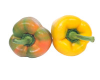 2 зрелых органических перца Стоковое Изображение RF