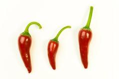 3 зрелых перца красных чилей дальше над белизной Стоковая Фотография RF