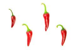 4 зрелых перца красных чилей на белизне Стоковые Фотографии RF