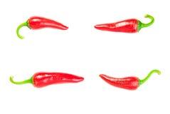 4 зрелых перца красных чилей на белизне Стоковое Изображение