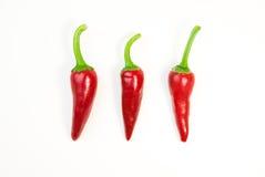3 зрелых перца красных чилей на белизне Стоковые Фотографии RF