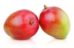 2 зрелых плодоовощ манго Стоковые Изображения