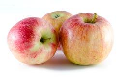 3 зрелых яблока изолированного на белой предпосылке Стоковые Изображения