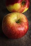 2 зрелых яблока сада закрывают вверх Стоковые Изображения RF