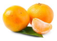 2 зрелых tangerines изолированного на белой предпосылке Стоковое Фото