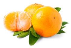 2 зрелых tangerines изолированного на белой предпосылке Стоковые Фотографии RF
