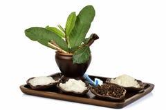 Зубная паста от естественных трав Таиланда сырья имеет медицину свойства Стоковые Изображения RF