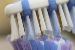 зубная щетка Стоковые Фотографии RF