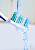 зубная щетка стоковое изображение