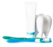Зубные щетки с мятой, зубной пастой и зубоврачебной зубочисткой изолировали o Стоковая Фотография