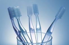 зубные щетки Стоковое Изображение