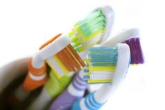 Зубные щетки Стоковое Фото