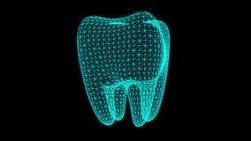 Зубоврачебная анимация рентгеновского снимка иллюстрация вектора