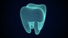 Зубоврачебная анимация рентгеновского снимка иллюстрация штока