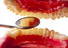 зубоврачебная гигиена Стоковое Изображение