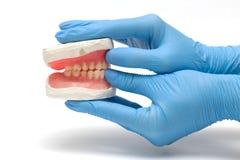 зубоврачебные аппаратуры Стоковое Изображение RF